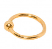 Пирсинг кольцо №1